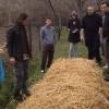 Permaculture Design Course (PDC) u Beogradu 2013