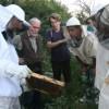 Seminar o biodinamičkom pčelarstvu od  26.03.2016.