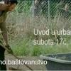 Urbano baštovanstvo u NS u subotu 7. novembra u 17:00