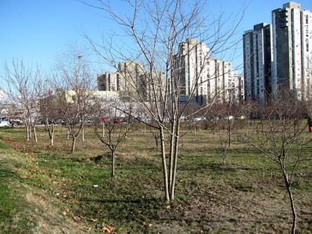 2011-decembar-03-Blok622