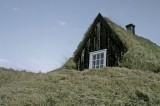 Zelena Arhitektura (2)